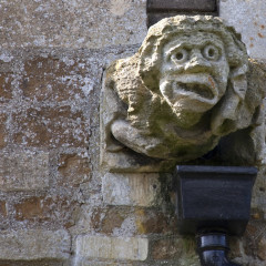 Fancy Photographing Gargoyles?